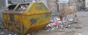 garbage-in-india-1
